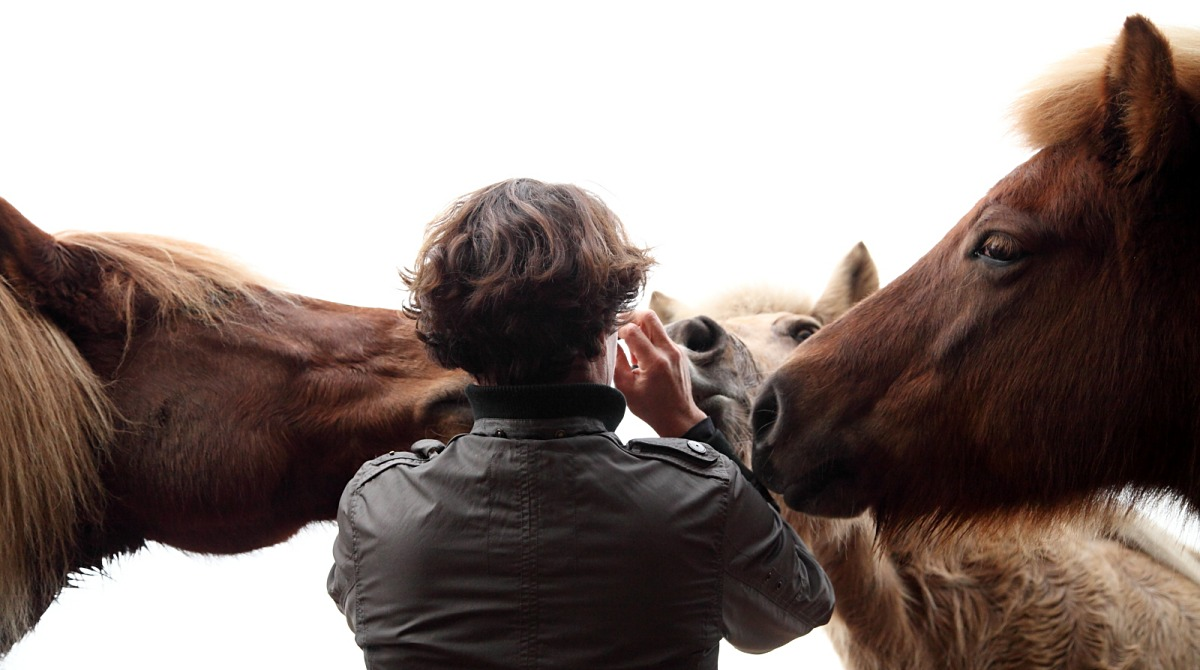 Paardenblik_opvoeden